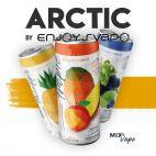 Arctic Mix & Vape By Enjoy Svapo