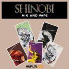 Liquidi Vaporart Shinobi Mix and Vape